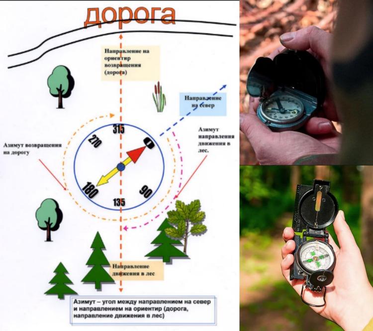 Как определить север по компасу