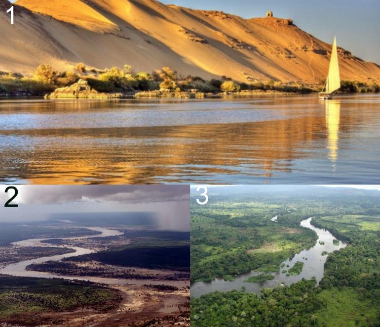 Какая река самая длинная на земле