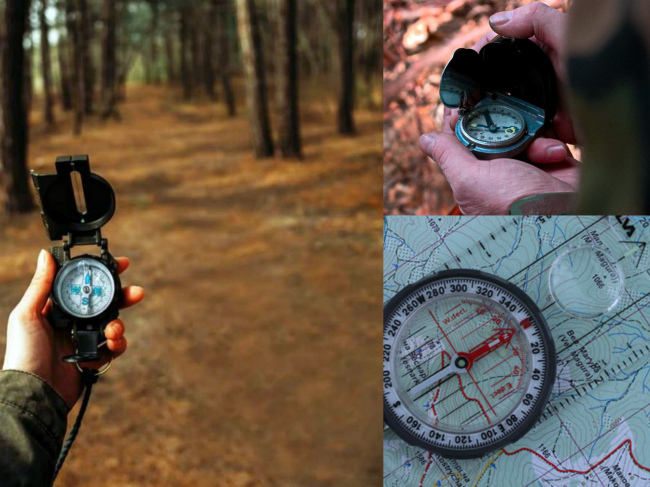 Ориентирование по часам в лесу
