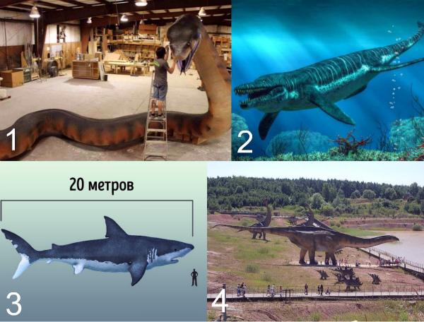 Самые большие древние животные