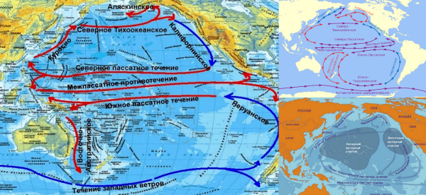 Карта тихоокеанских течений